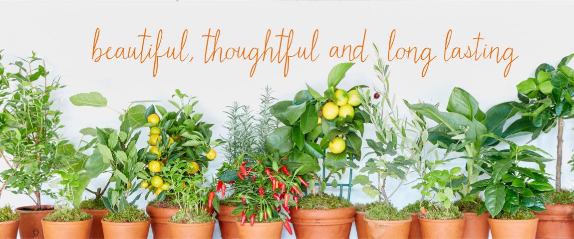 Gluttonous Gardener Gardening Gifts