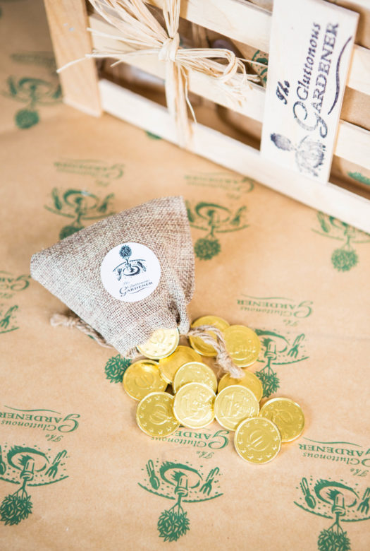 Magic Money Tree Gift Coins