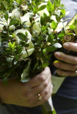 Myrtle Flowers