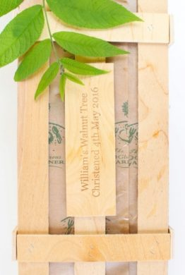 Walnut Tree Christening Gift Wood Plaque