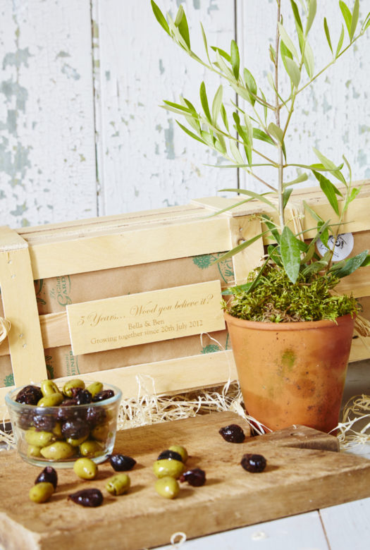 5Th Wedding Anniversary Personalised Olive Tree Gift