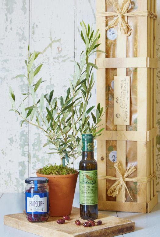 Extra Olive Enthusiasts Gift Kit