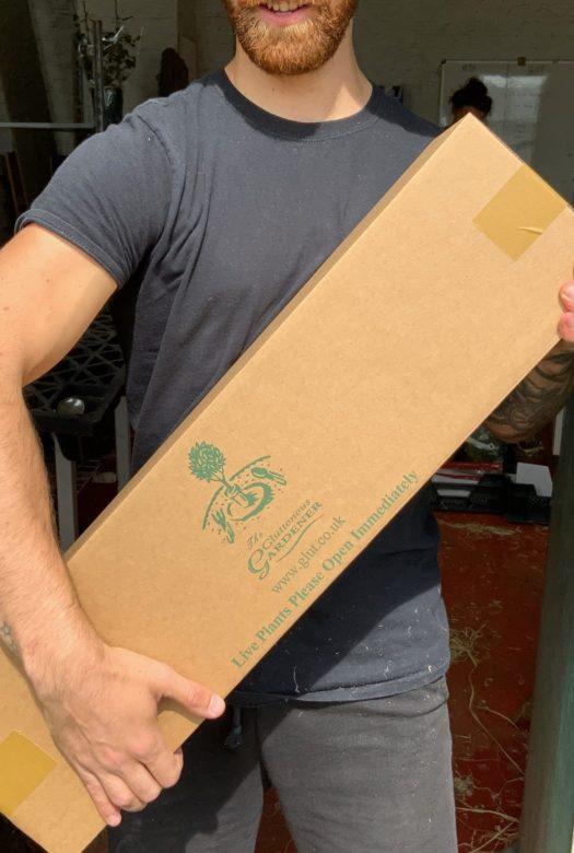 Gluttonous Gardener box