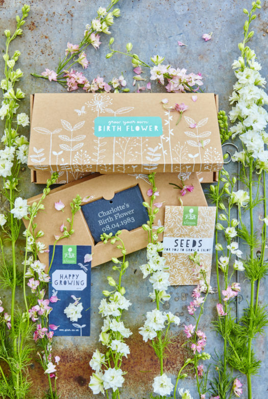 Grow Your Own July Birthday Flowers