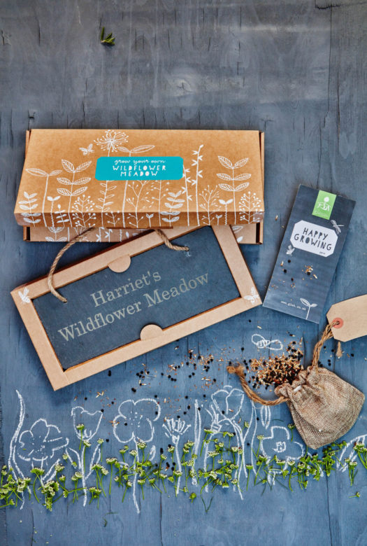 Grow Your Own Wildflower Meadow Gift