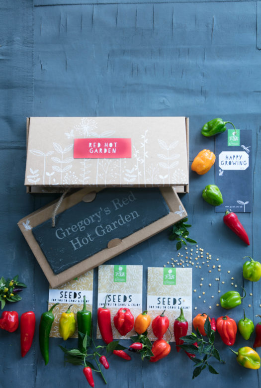 Red Hot Chilli Garden Gift