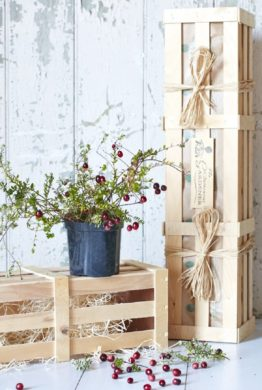 Cranberry Bush Gift Crate