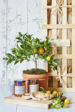 Extra Orange Gardening Gift