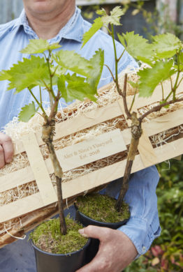Personalised Grapevine Crate