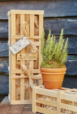Rosemary for Remembrance Gift